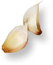 footer-garlic